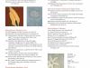 tobi-kahn-catalog-06