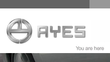 Robert Breisch Portfolio Work - AYES Website Design